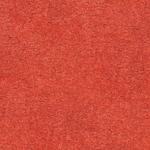carpet_25