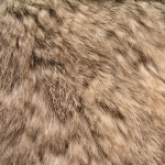 zhivotnoe-Animal fur textures (116)