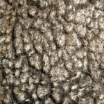 zhivotnoe-Animal fur textures (125)