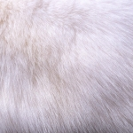 zhivotnoe-Animal fur textures (13)