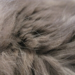 zhivotnoe-Animal fur textures (28)