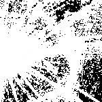 razbitoe-steklo-11