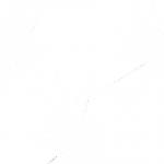 razbitoe-steklo-14