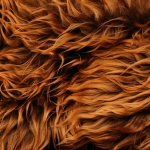 zhivotnoe-Animal fur textures (1)