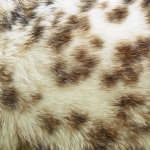 zhivotnoe-Animal fur textures (29)