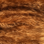 zhivotnoe-Animal fur textures (3)