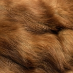 zhivotnoe-Animal fur textures (41)