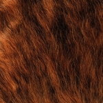 zhivotnoe-Animal fur textures (48)