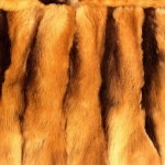 zhivotnoe-Animal fur textures (55)