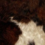 zhivotnoe-Animal fur textures (60)
