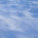 sneg (15)