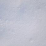 sneg (20)