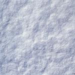 sneg (22)