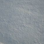sneg (26)