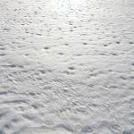 sneg (36)