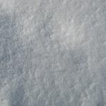 sneg (41)