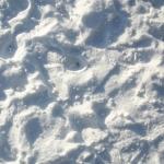 sneg (48)