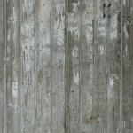 staroe-derevo (42)