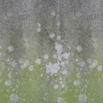 stariy-beton (22)
