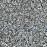 stariy-beton (27)