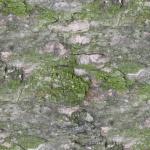 stariy-beton (3)