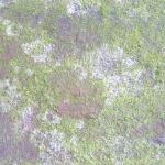 stariy-beton (36)
