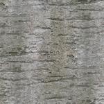 stariy-beton (9)