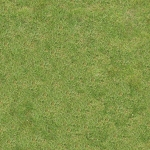grass_14